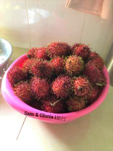 越南必吃水果