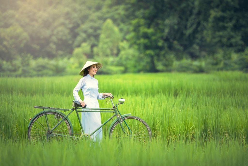 越南奧黛美女