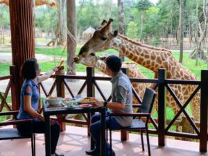 富國島野生動物園