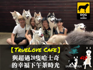 TrueLove Cafe