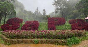 Sapa空中花園