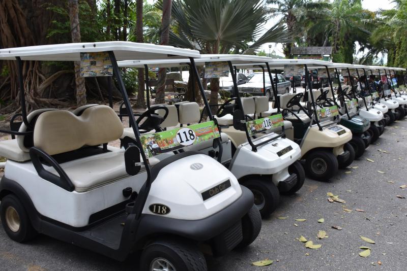 綠山動物園高爾夫球車