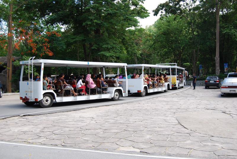 綠山動物園遊園車
